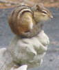 Photo of the project mascot: a chipmunk standing on a statue